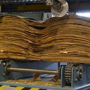 Производство фанеры и шпона